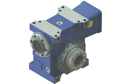 Low backlash right angle servo worm reducer